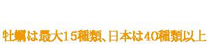 店主が選んだ全国の牡蠣と酒。牡蠣は最大15種類、日本は40種類以上。